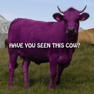 """Why I believe in """"The Purple Cow"""": Part 1"""