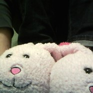 The Blessings of Bunny Slippers