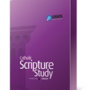 Logos Bible Software: 4 Reviews in One