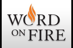 What I Gleaned From Word on Fire&#8217;s <em>New Evangelization</em> Series