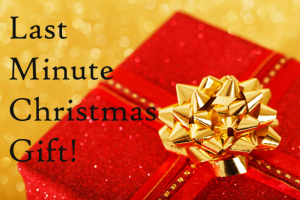 red-christmas-present copy