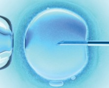 Why is the Catholic Church against IVF?