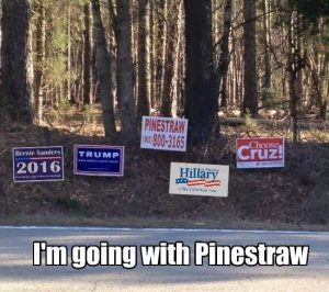 pinestraw